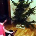 weihnachtsbaum-nadeln-ab_feat