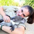 koala-kuscheln_feat
