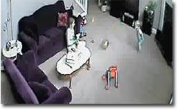 cat-attacks-babysitter_big