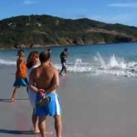 delfin-rettung_feat