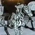 handy-chaplin-circus-zeitreise_feat