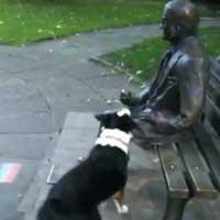 hund-stoeckchen-statue-spielen_feat