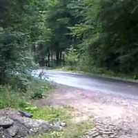 rennstrecke-wald-fast-unfall_feat