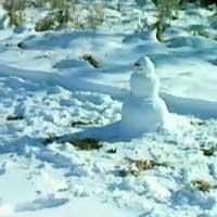 top20-ways-kill-snowman_feat